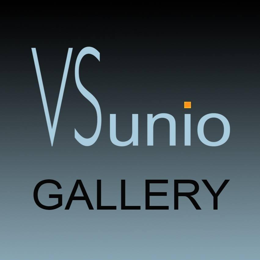 Галерея «VSunio»