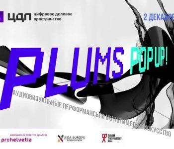 Международный фестиваль аудиовизуальных экспериментов и медиаискусства PLUMS POP UP