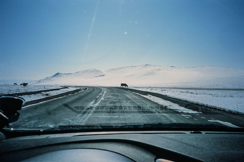 Выставка «Ледяной поход»