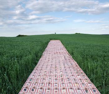 Выставка Люды Калиниченко «500 METERS_ONLINE»