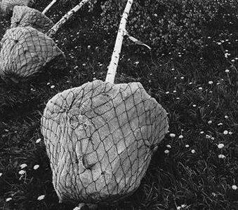 Выставка «Неволя»