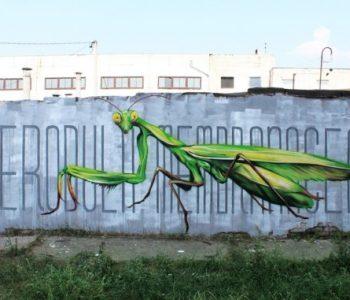 Фестиваль уличного искусства «БОГОМОЛ ФЕСТ»