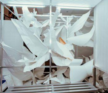 В Москве открылась выставка Светы Шуваевой.