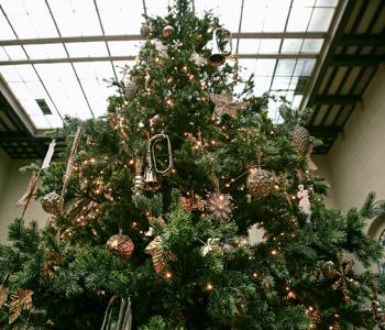 Встречаем Новый год вместе с Пушкинским музеем