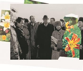 Агентства Сингулярных Исследований. Flower Power. Архив