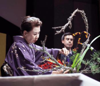 Нихон но Би – Красота Японии