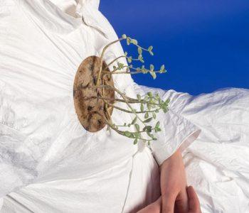 Сеанс суккулентотерапии Анастасии Кизиловой «Колонизированное растение»