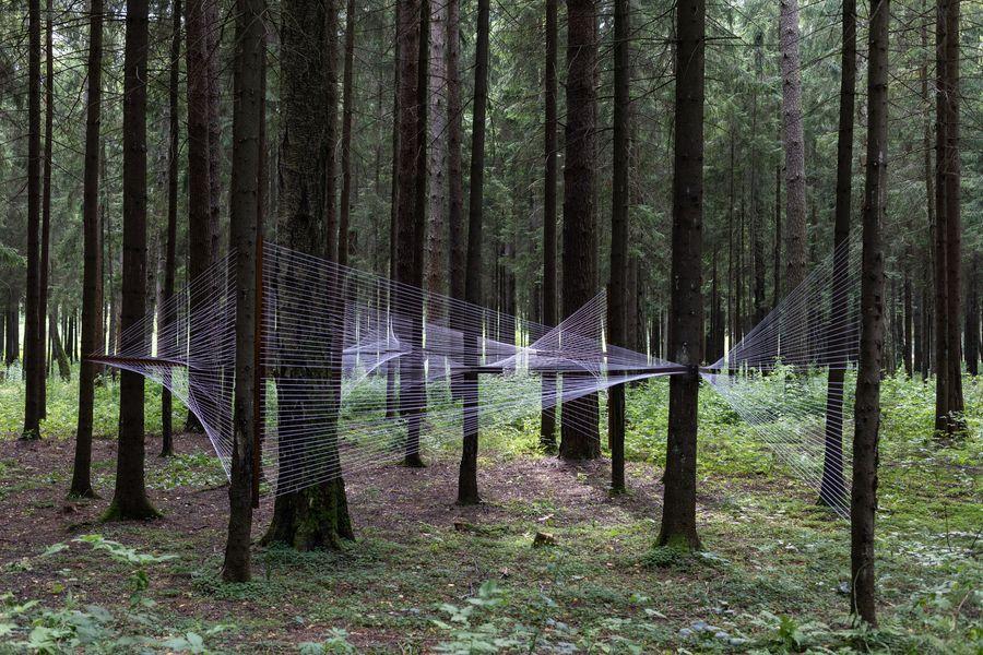 ЧА ЩА. Выставка в лесах